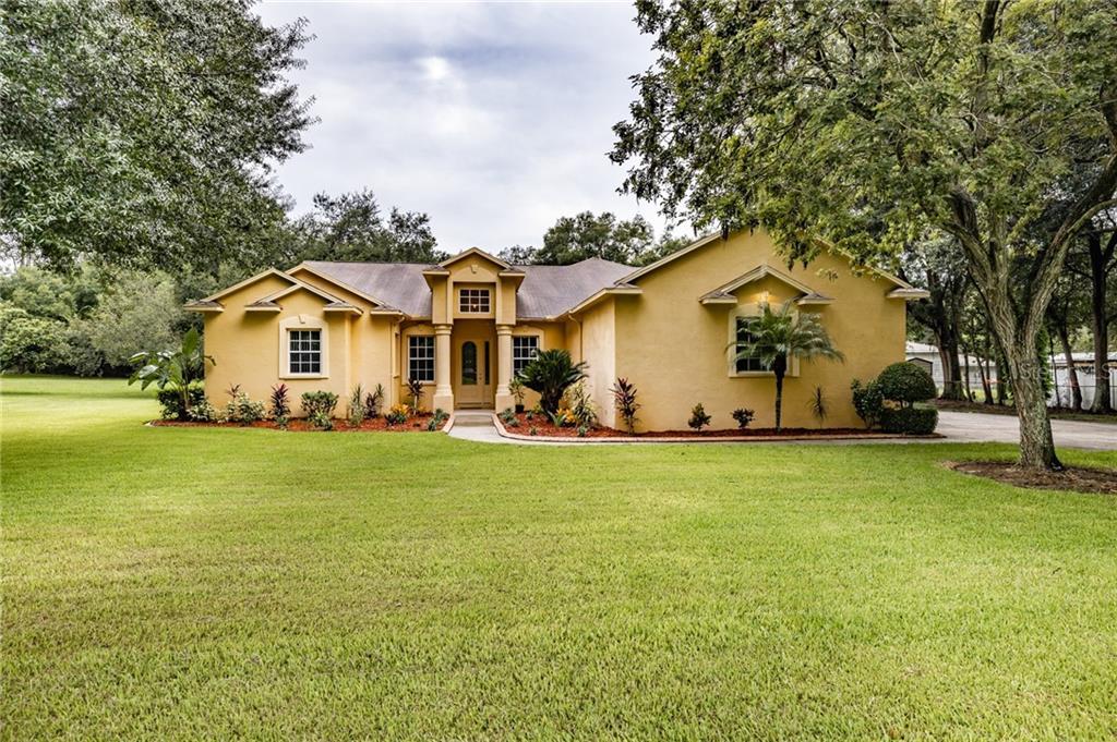 12114 HAZEN AVENUE Property Photo - THONOTOSASSA, FL real estate listing