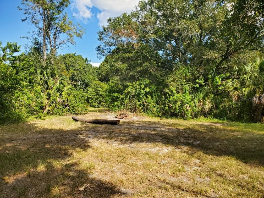 4805 FOXWORTH ROAD Property Photo - RIVERVIEW, FL real estate listing