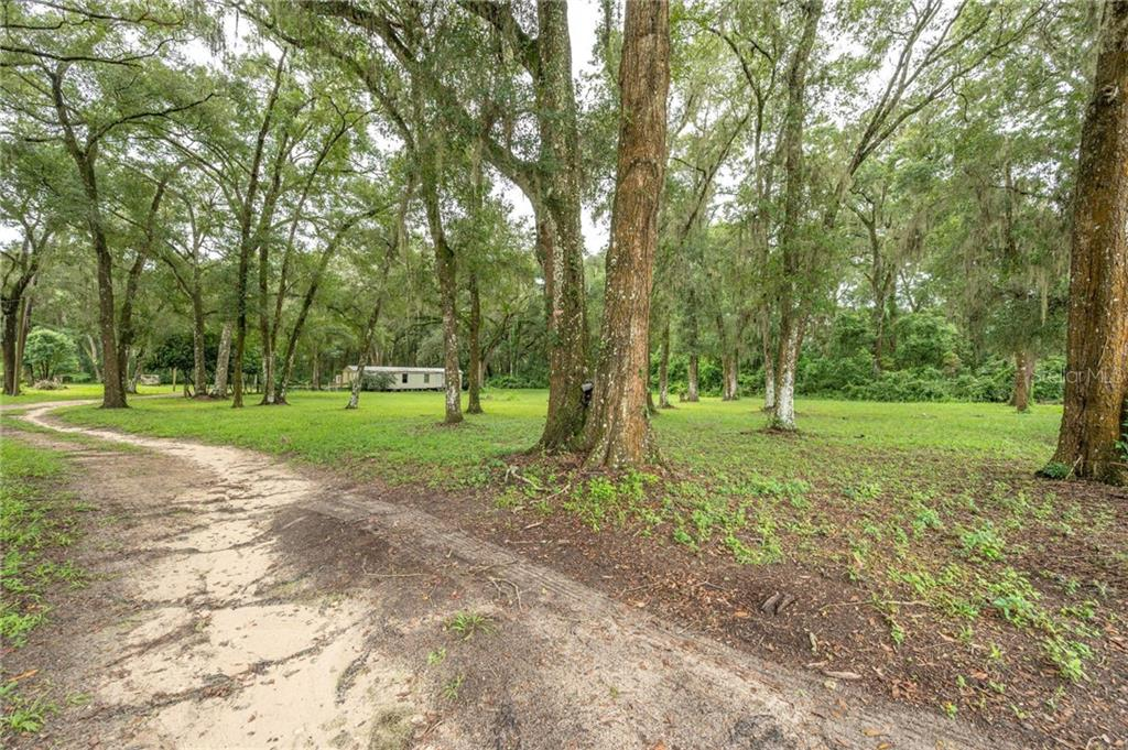 36816 INDIAN LAKE CEMETERY ROAD Property Photo