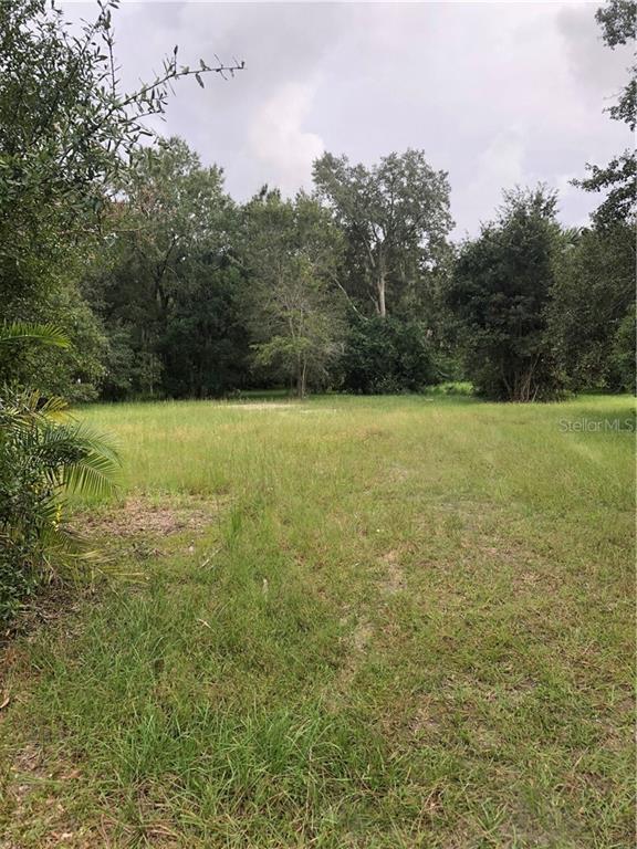3420 W Lutz Lake Fern Road Property Photo