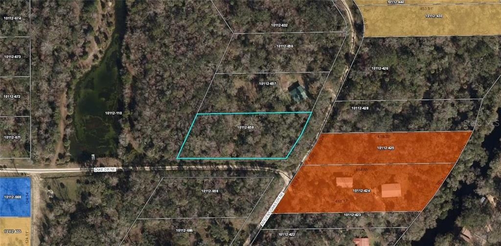 ANCIENT OAKES DRIVE NE Property Photo - PERRY, FL real estate listing