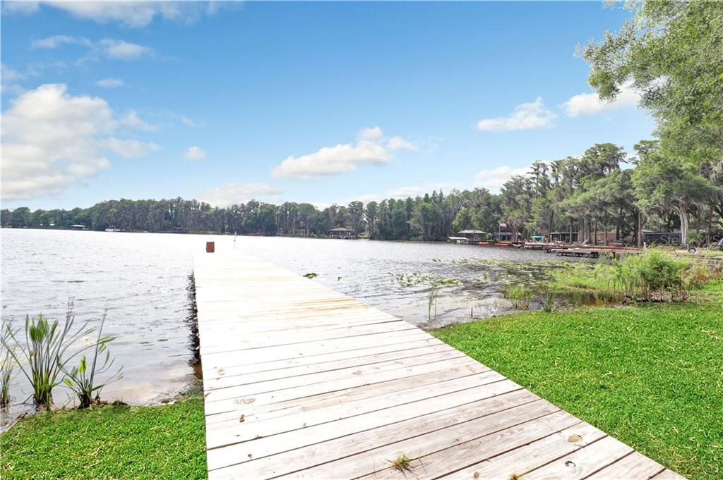 20345 MOSS BEND COURT Property Photo - LUTZ, FL real estate listing