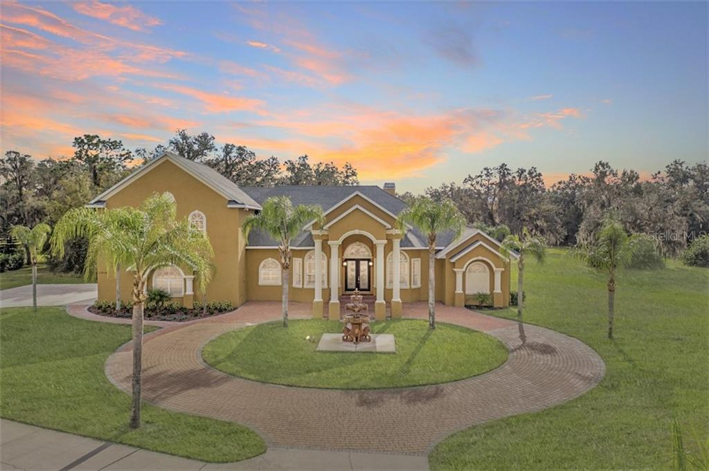 11518 HAMMOCK OAKS COURT Property Photo - LITHIA, FL real estate listing