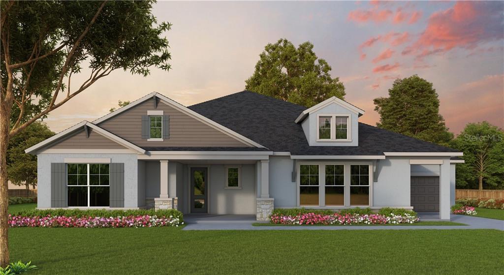 3194 BROWN BROCKET LANE Property Photo - LUTZ, FL real estate listing