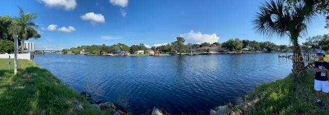 4305 N RIVER VIEW AVENUE Property Photo - TAMPA, FL real estate listing