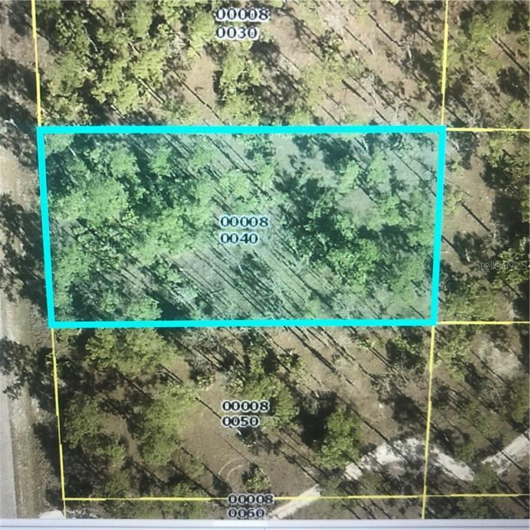 16 WELLS AVENUE Property Photo - LEHIGH ACRES, FL real estate listing