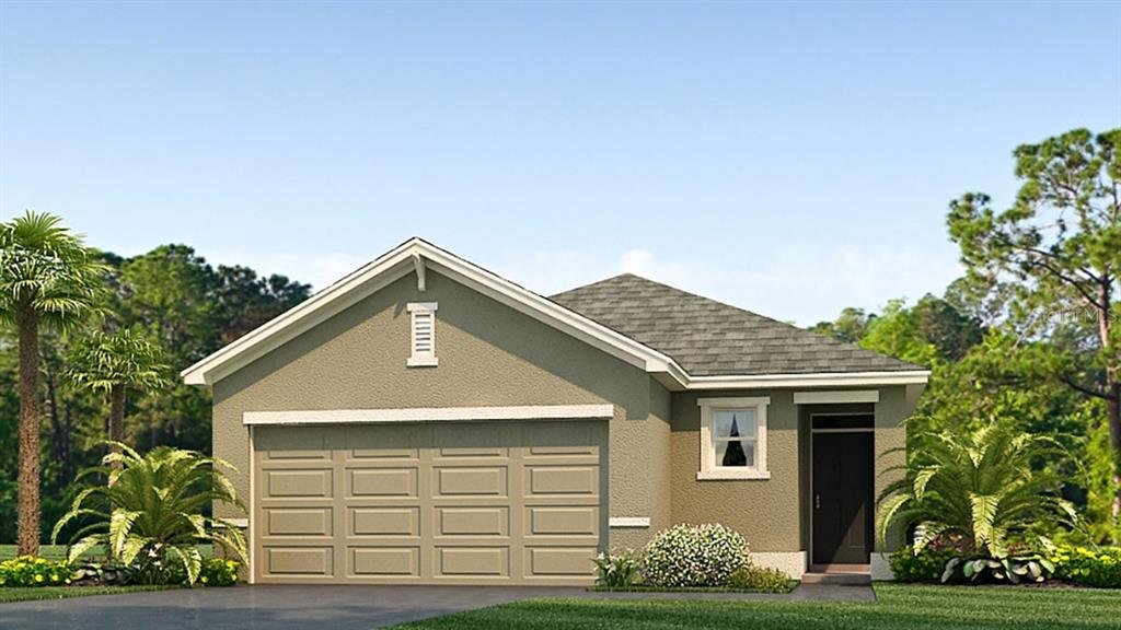 9041 WATER CHESTNUT DRIVE Property Photo - TAMPA, FL real estate listing