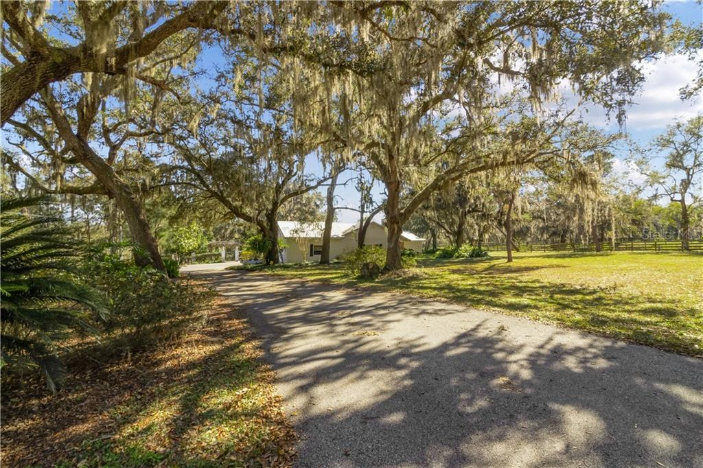 5308 GRIFFIN ROAD Property Photo - BROOKSVILLE, FL real estate listing
