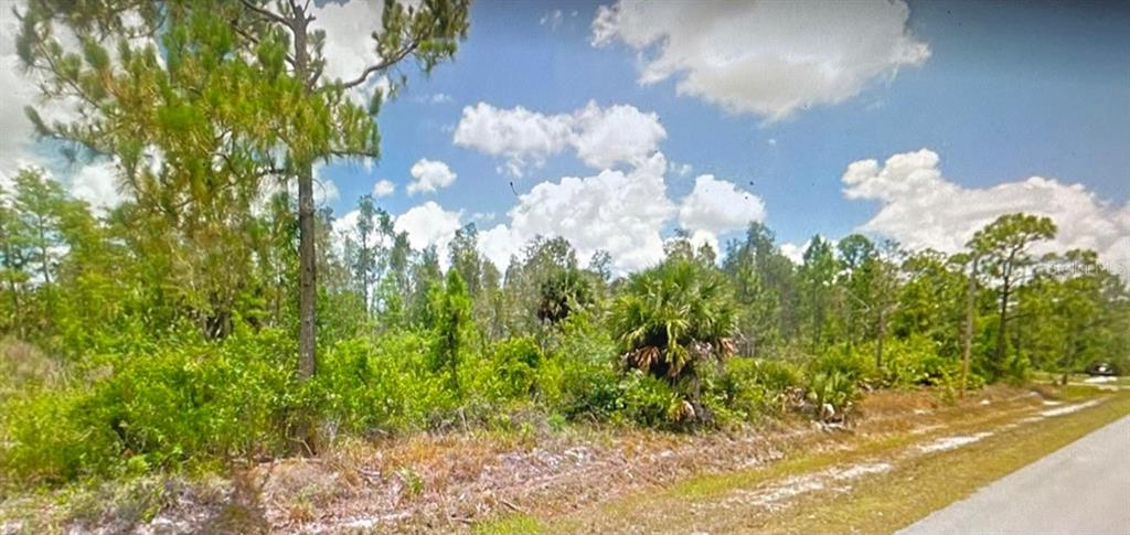 45TH AVE NE Property Photo - NAPLES, FL real estate listing