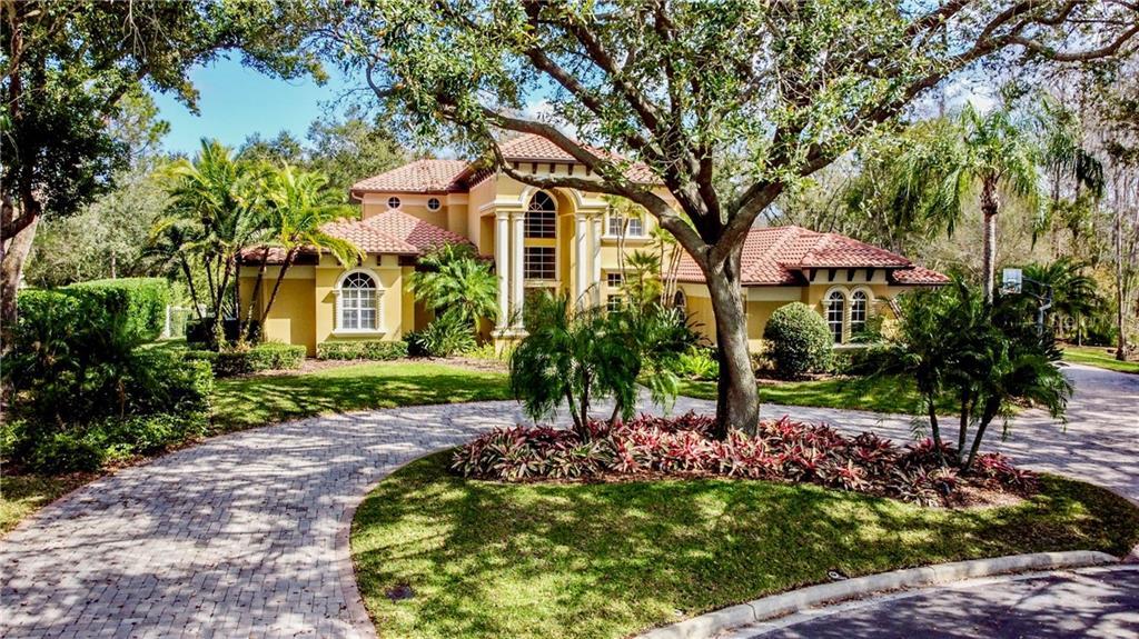 16201 TALAVERA DE AVILA Property Photo - TAMPA, FL real estate listing