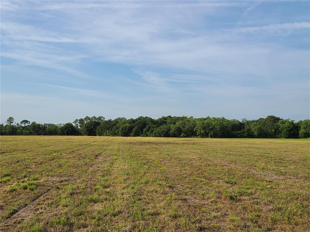 672ND HIGHWAY Property Photo - LITHIA, FL real estate listing