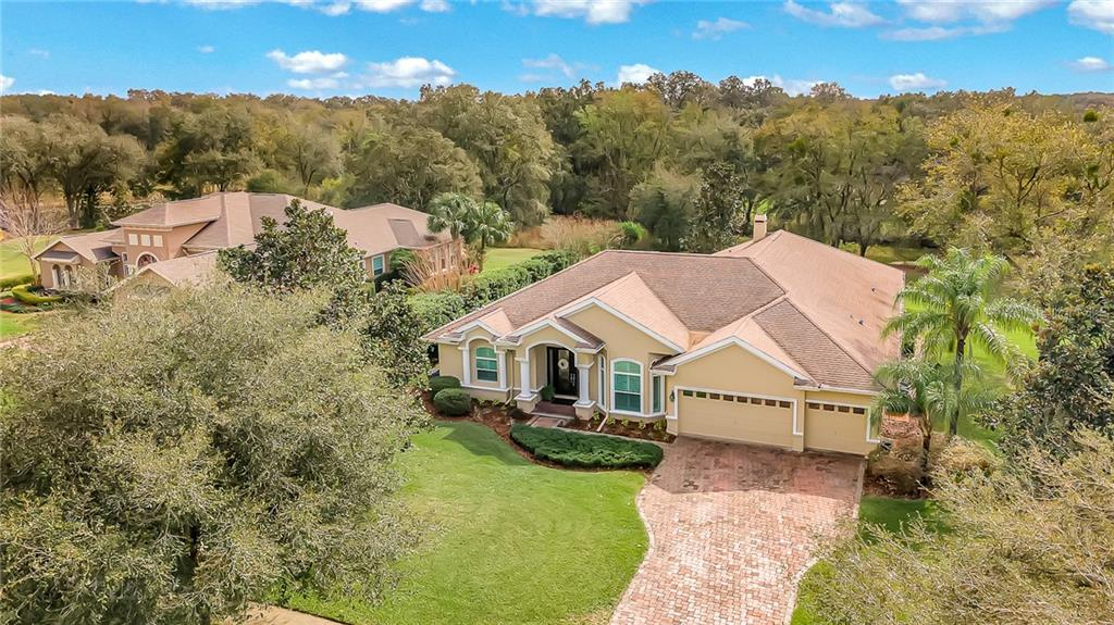 19703 WILD WATER COVE Property Photo - LUTZ, FL real estate listing