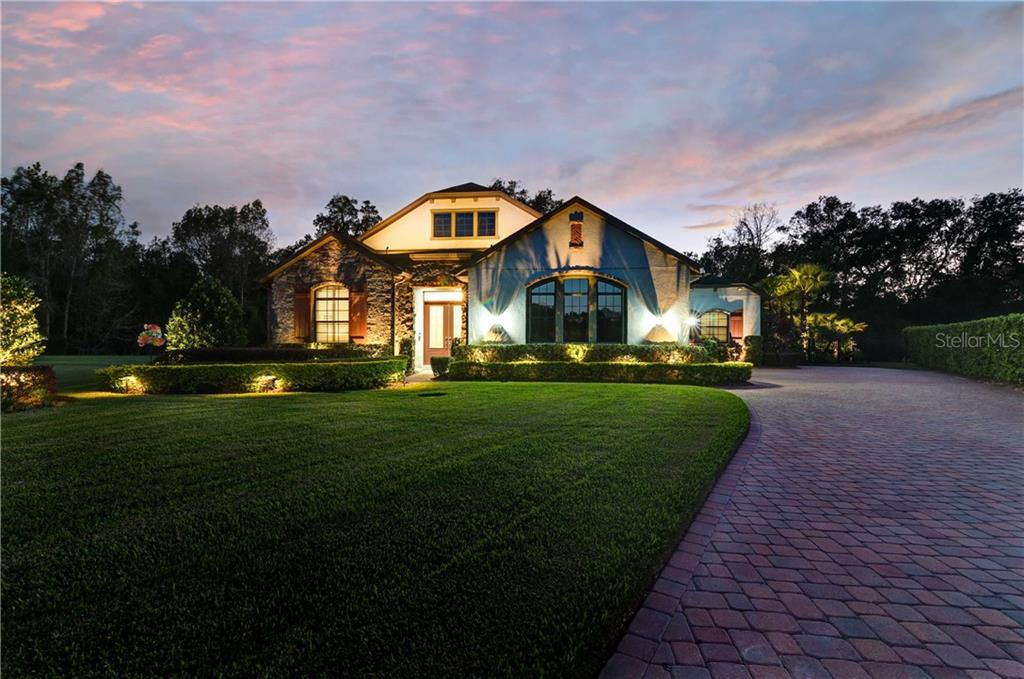 3223 CORDOBA RANCH BOULEVARD Property Photo - LUTZ, FL real estate listing