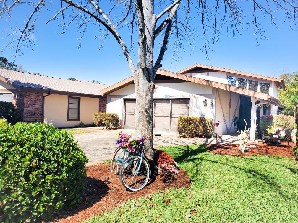 11523 W RIVERHAVEN DRIVE Property Photo - HOMOSASSA, FL real estate listing