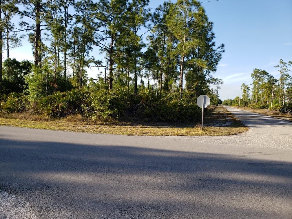 3207 E 10TH STREET Property Photo - LEHIGH ACRES, FL real estate listing