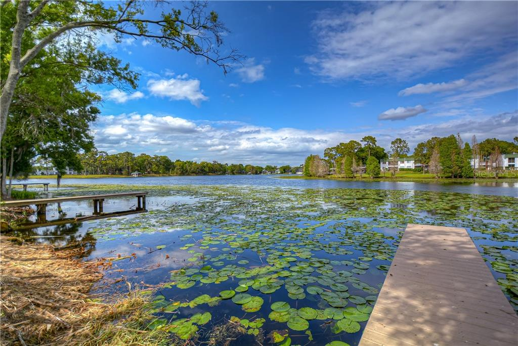 9731 LAKESIDE RESERVE PLACE Property Photo - TAMPA, FL real estate listing