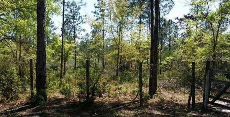 20037 DICKERSON ROAD Property Photo - FOUNTAIN, FL real estate listing