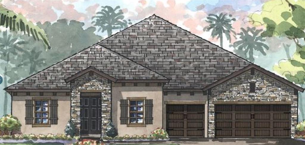 4607 RIDGEWOOD ESTATES AVENUE Property Photo - VALRICO, FL real estate listing
