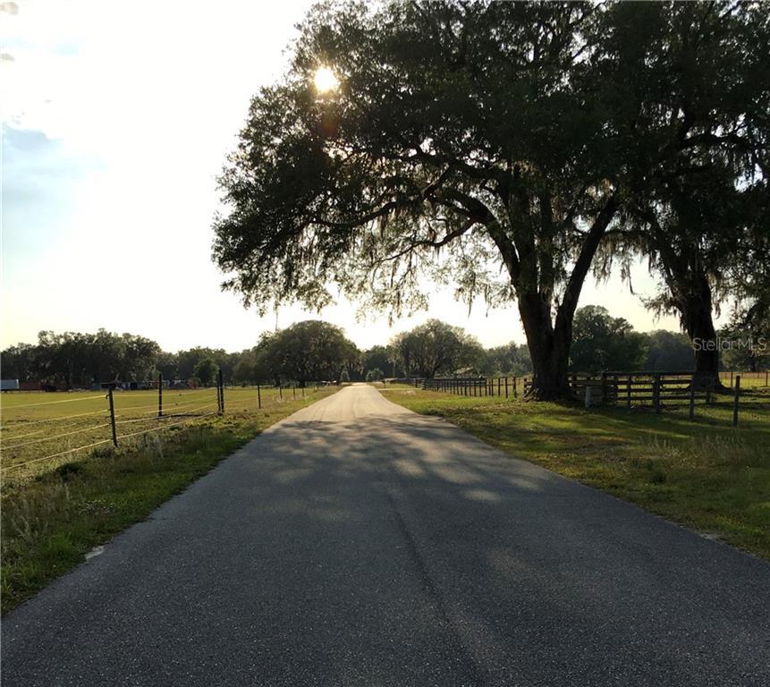CR 546A Property Photo - BUSHNELL, FL real estate listing