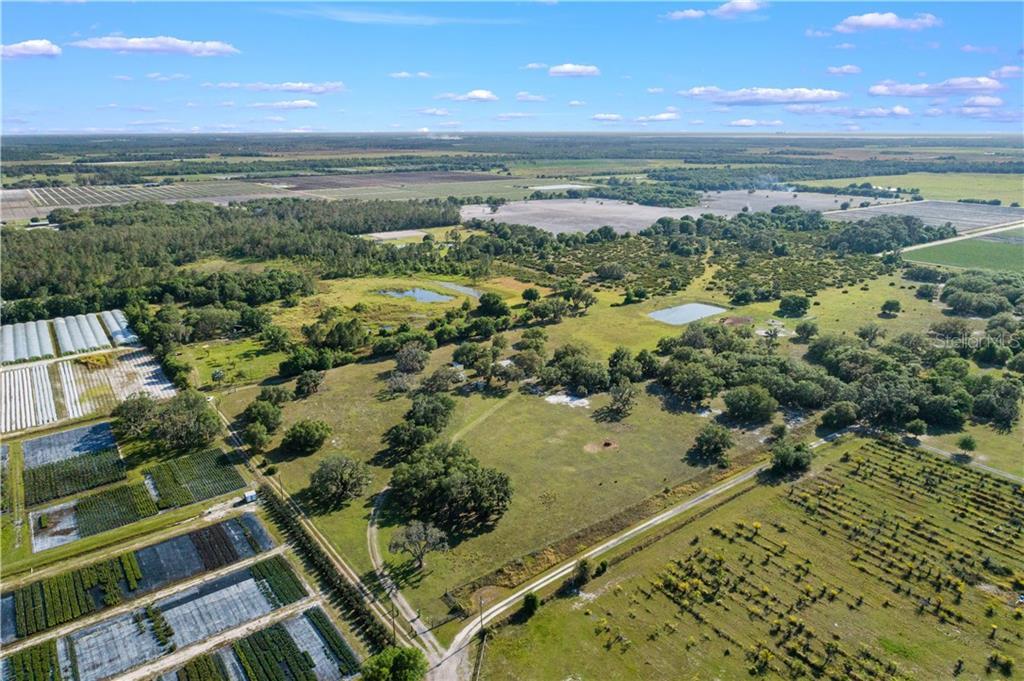 9811 LINDA SWEAT TRAIL Property Photo - WIMAUMA, FL real estate listing