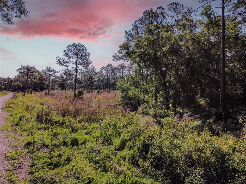 14805 Berkford Avenue Property Photo