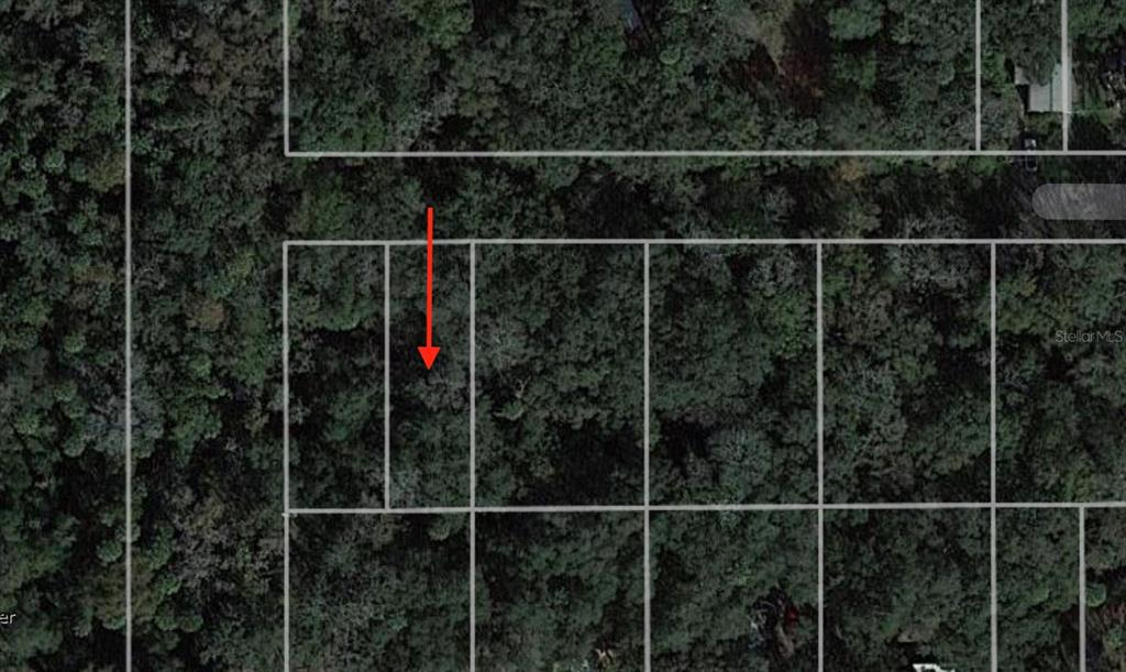 939 ESTELLE AVENUE Property Photo - BRANDON, FL real estate listing