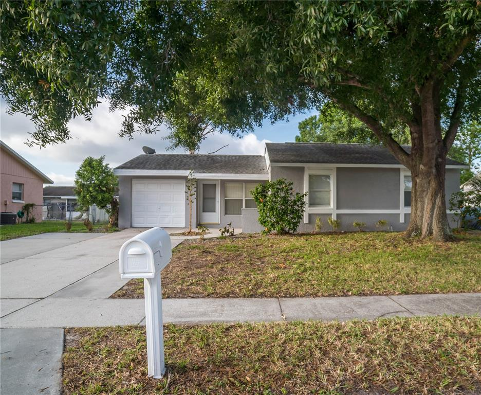 3050 LECANTO STREET Property Photo - HOLIDAY, FL real estate listing