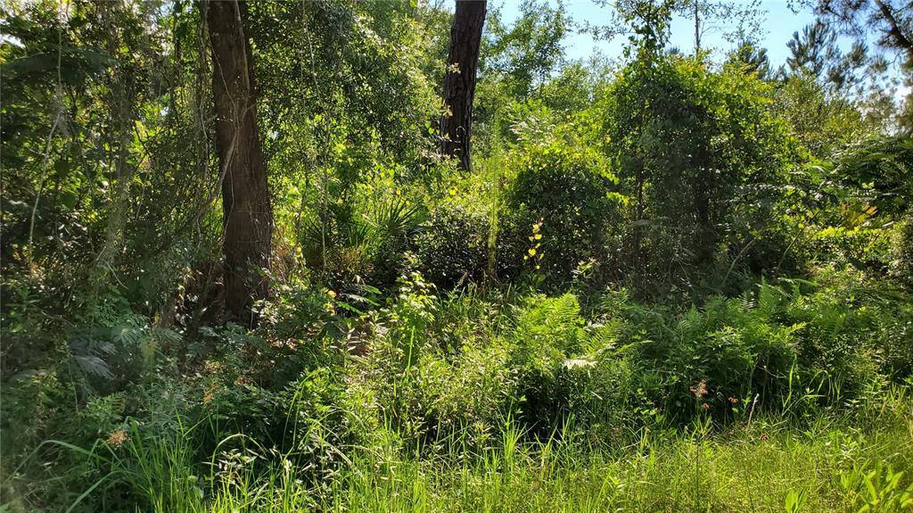 Bowfin Drive Property Photo