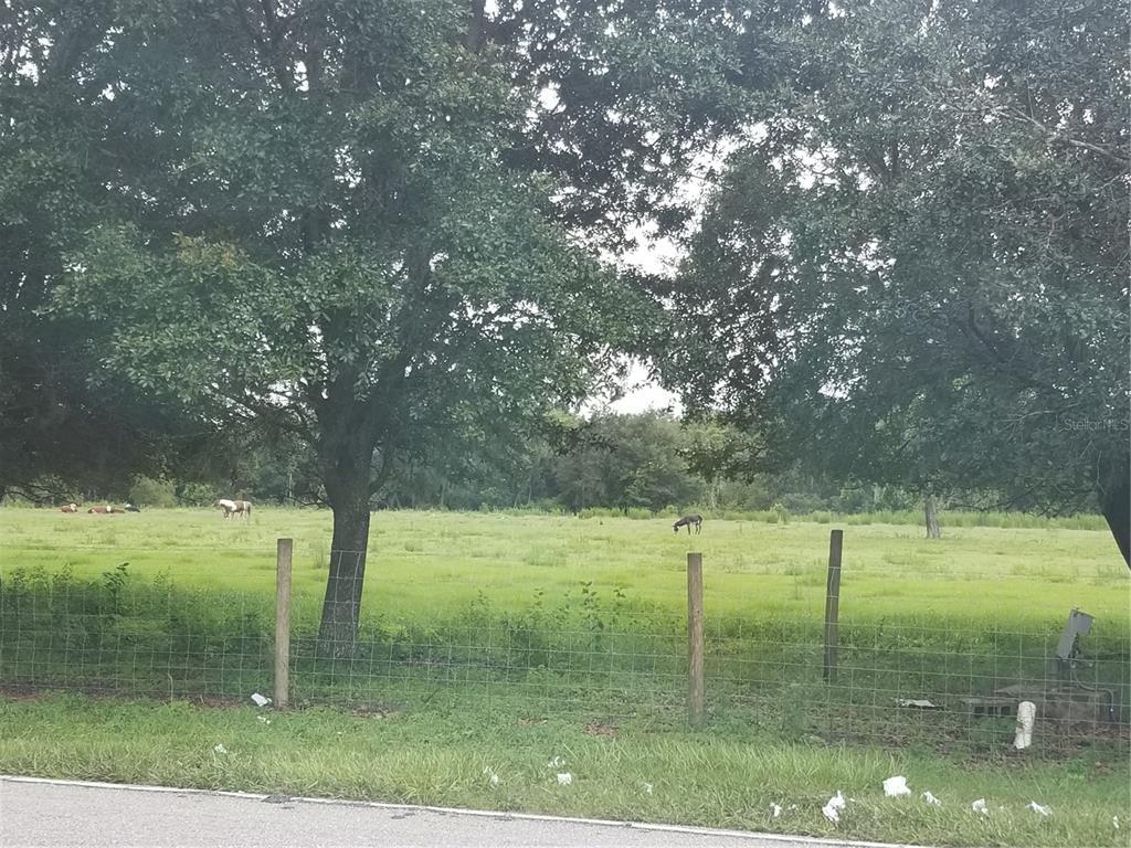 6301 Thonotosassa Road Property Photo