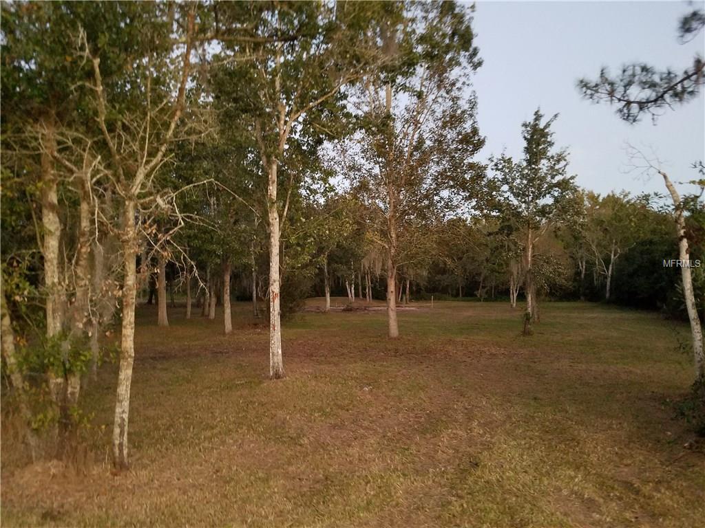 7834 BOYETTE ROAD Property Photo - WESLEY CHAPEL, FL real estate listing