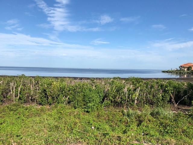 HARBORPOINTE DRIVE Property Photo - PORT RICHEY, FL real estate listing