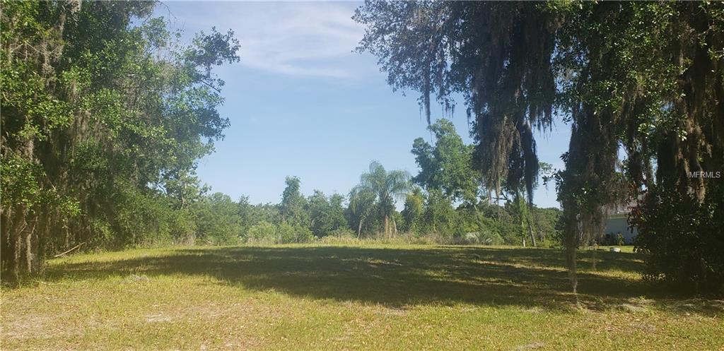 17041 COMUNIDAD DE AVILA Property Photo - LUTZ, FL real estate listing