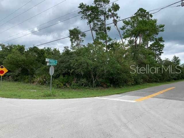 PANTHER ST Property Photo - PAISLEY, FL real estate listing