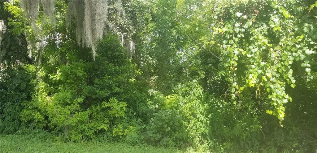 ROWAN RD Property Photo - NEW PORT RICHEY, FL real estate listing