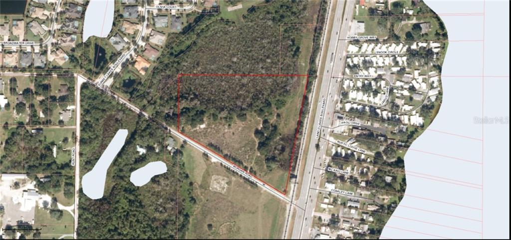 21201 MORGAN RD Property Photo - LAND O LAKES, FL real estate listing