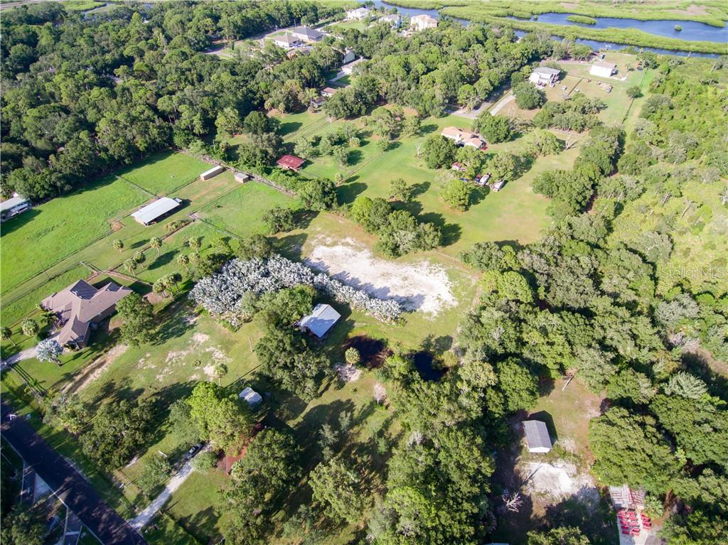 8123 DOUBLE BRANCH ROAD Property Photo - TAMPA, FL real estate listing