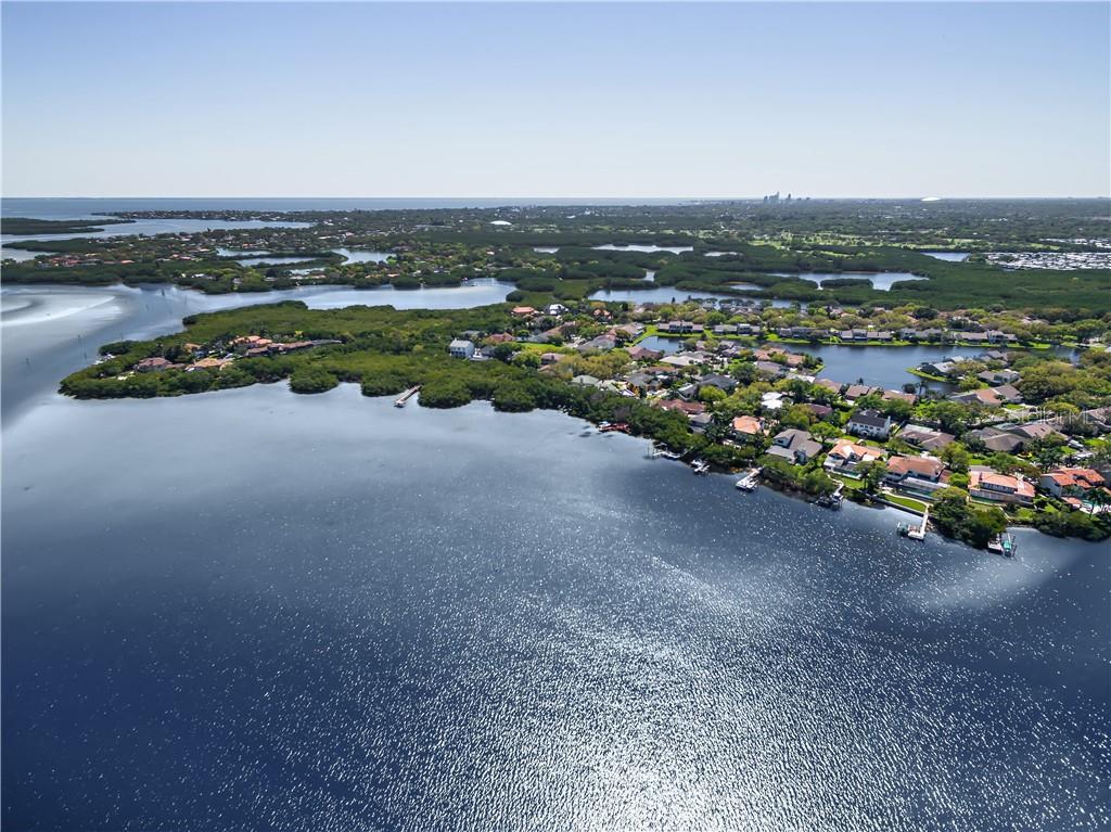 1055 MARCO DRIVE NE Property Photo - ST PETERSBURG, FL real estate listing