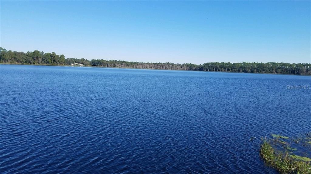 112 SUSAN LAKE SHORE LN Property Photo - HAWTHORNE, FL real estate listing