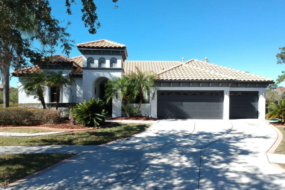 20208 CANE RIVER WAY Property Photo - TAMPA, FL real estate listing