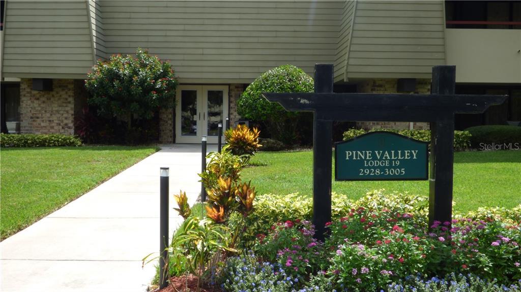 36750 US HIGHWAY 19 N #19204 Property Photo - PALM HARBOR, FL real estate listing