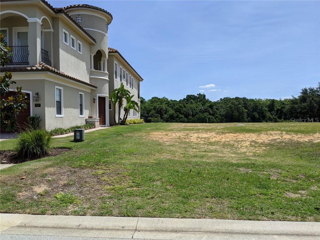 741 DESERT MOUNTAIN COURT Property Photo - REUNION, FL real estate listing