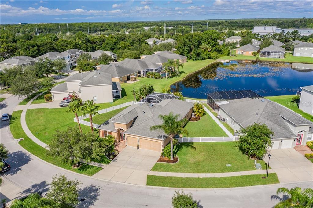 19915 BLUFF OAK BLVD Property Photo - TAMPA, FL real estate listing