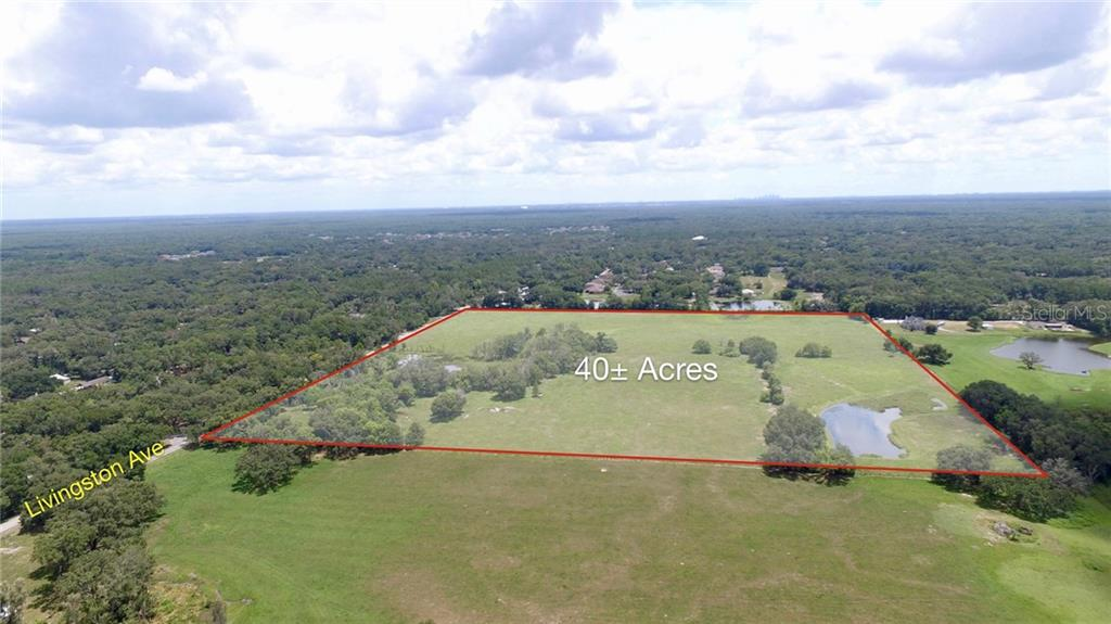 18818 LIVINGSTON AVENUE Property Photo - LUTZ, FL real estate listing
