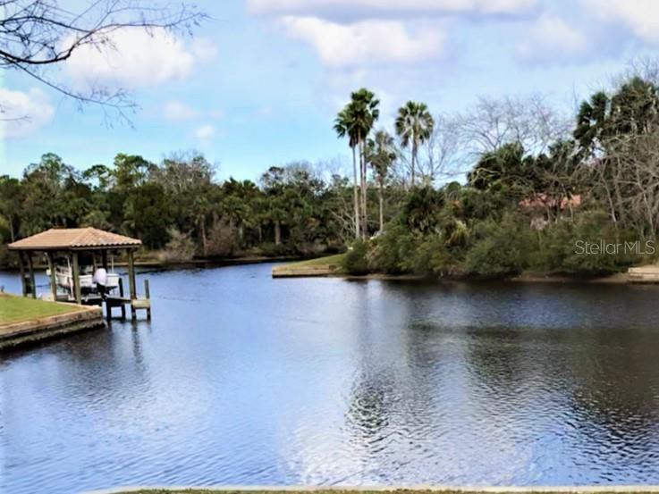 5 CREE COURT Property Photo - PALM COAST, FL real estate listing
