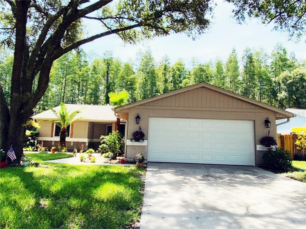 5340 BLACK PINE DR Property Photo - TAMPA, FL real estate listing