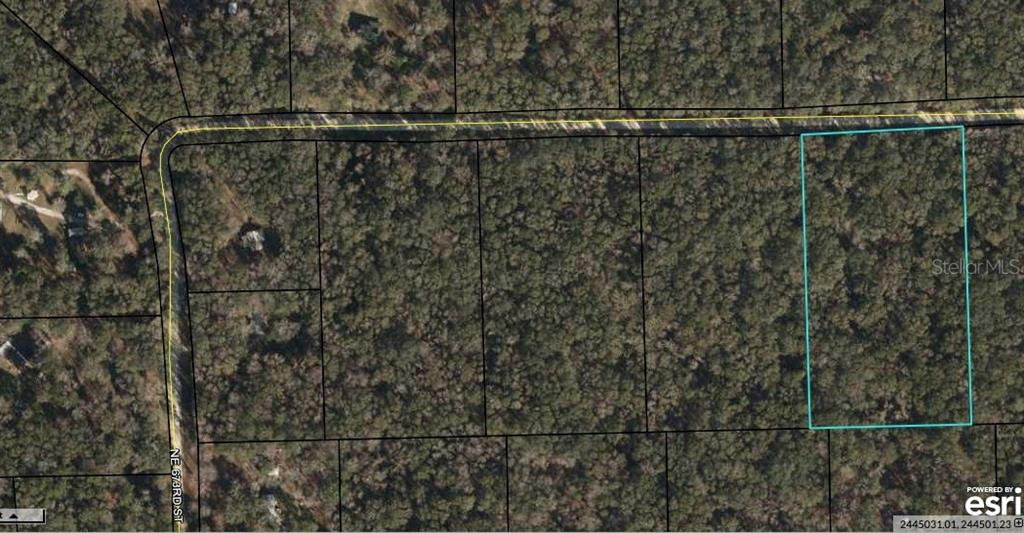 NE UNASSIGNED Property Photo - OLD TOWN, FL real estate listing