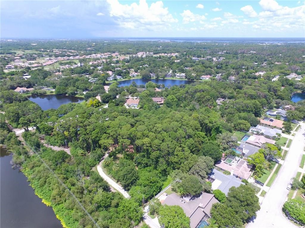 1291 ENISWOOD PKWY Property Photo - PALM HARBOR, FL real estate listing
