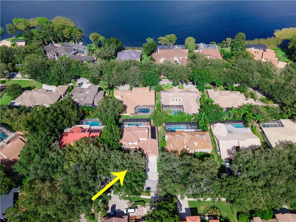 2429 WATERVIEW COURT Property Photo - PALM HARBOR, FL real estate listing
