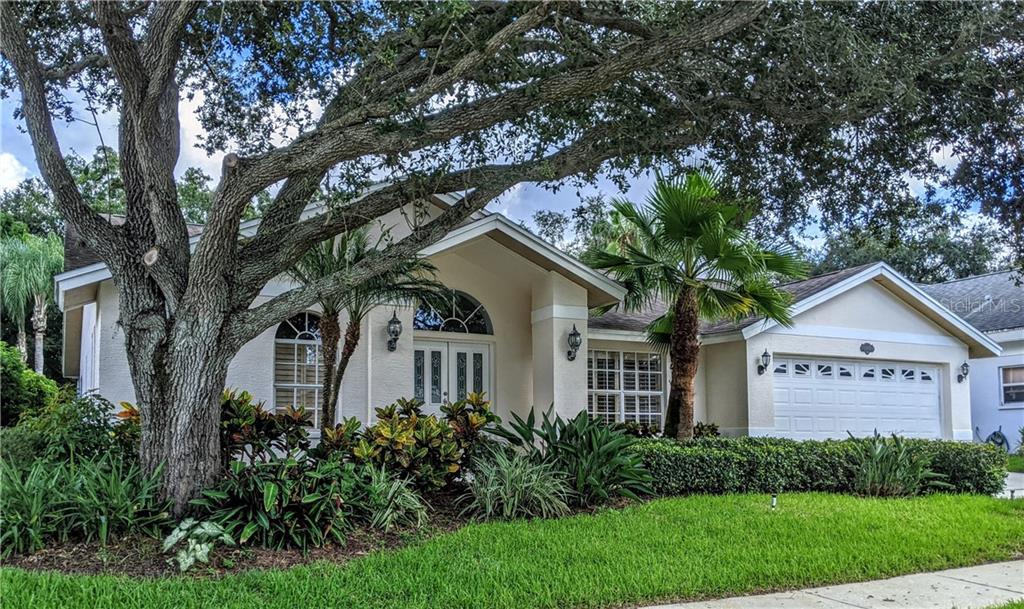 2901 SPRING OAK COURT Property Photo - PALM HARBOR, FL real estate listing
