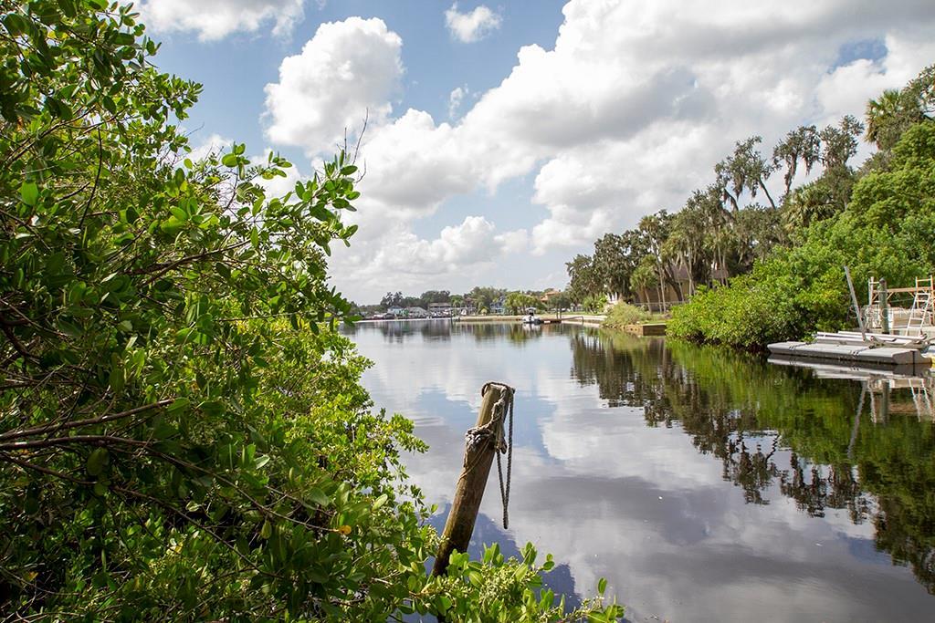 7752 WEBER LANE Property Photo - PORT RICHEY, FL real estate listing